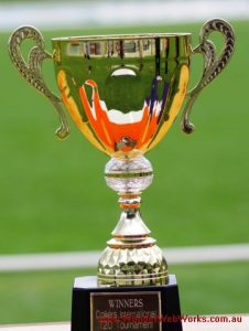FINACT T-20 Cup